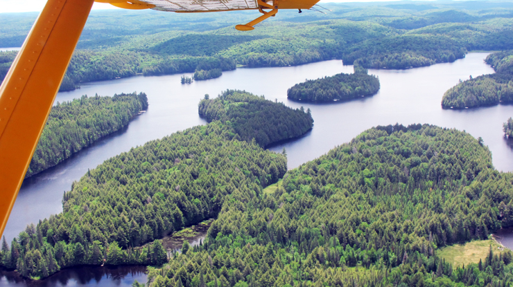Algonquin Park from the air - endless wilderness and sparkling water.
