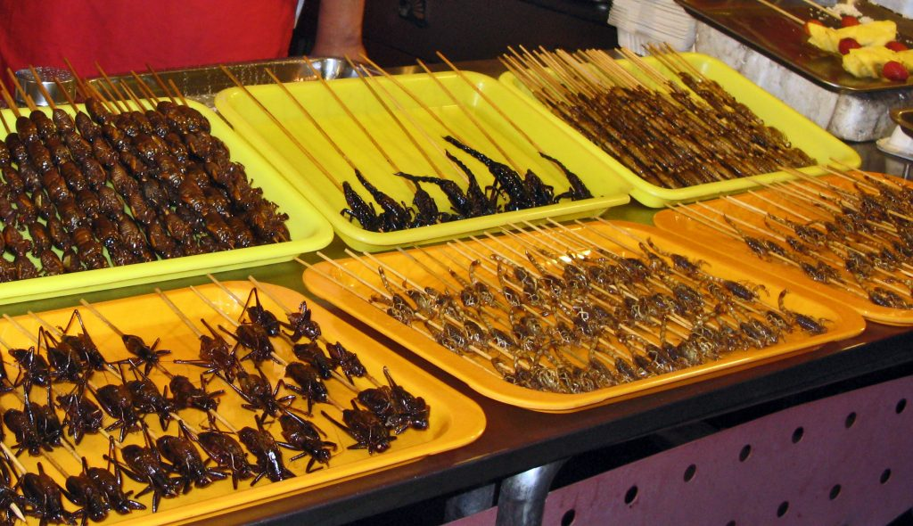 Beijing Night Market - scorpiions, bugs, and more on skewers