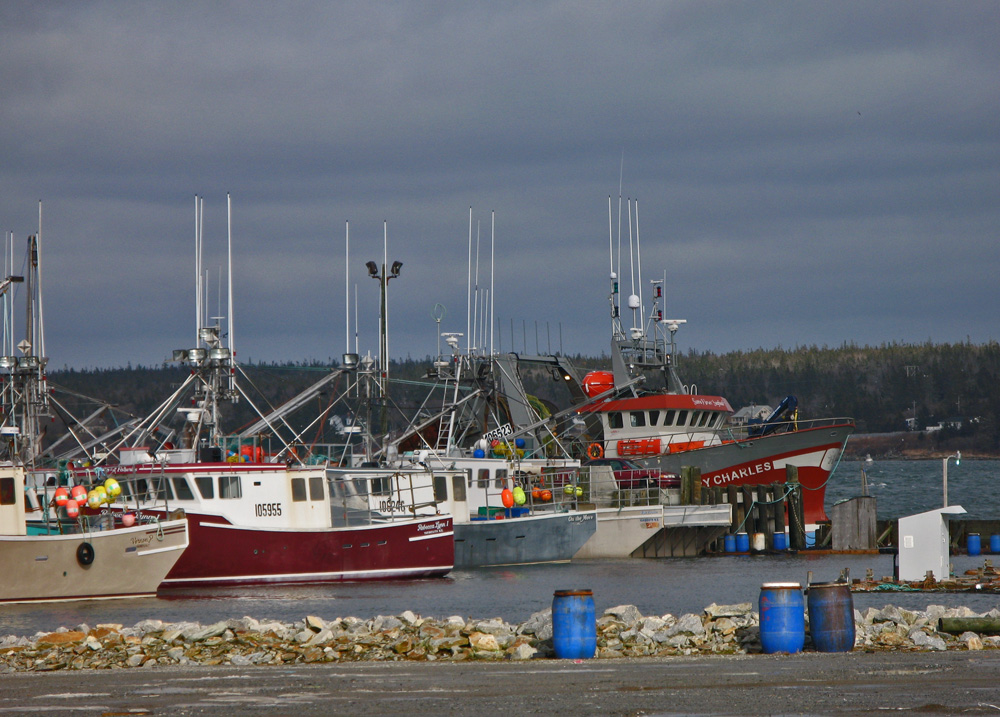 lobster boats in harbour Acadian Rappie Pie
