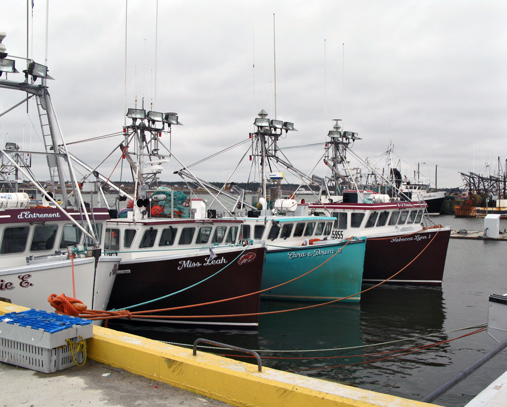 lobster boats in row Acadian Rappie Pie
