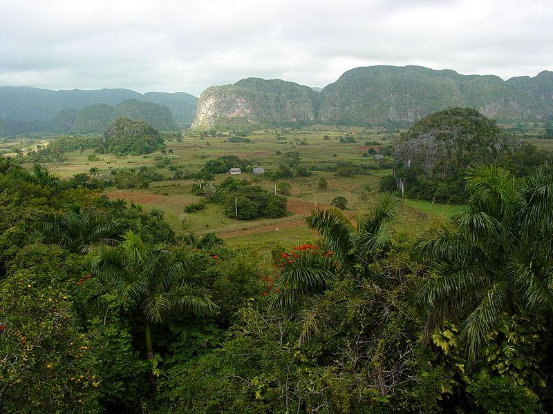 Pinar Del Rio region of Cuba -The Perfect Cigar -Cuba's Gift to the World