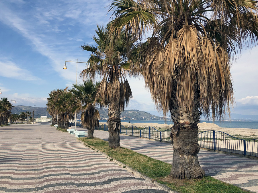 Sea and palm trees along the sea walk Escape Winter in Calabria
