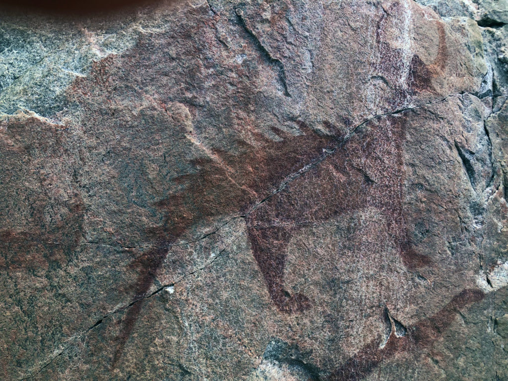 Drawing on the rock face of a spined back creature with a single horn coming from his head