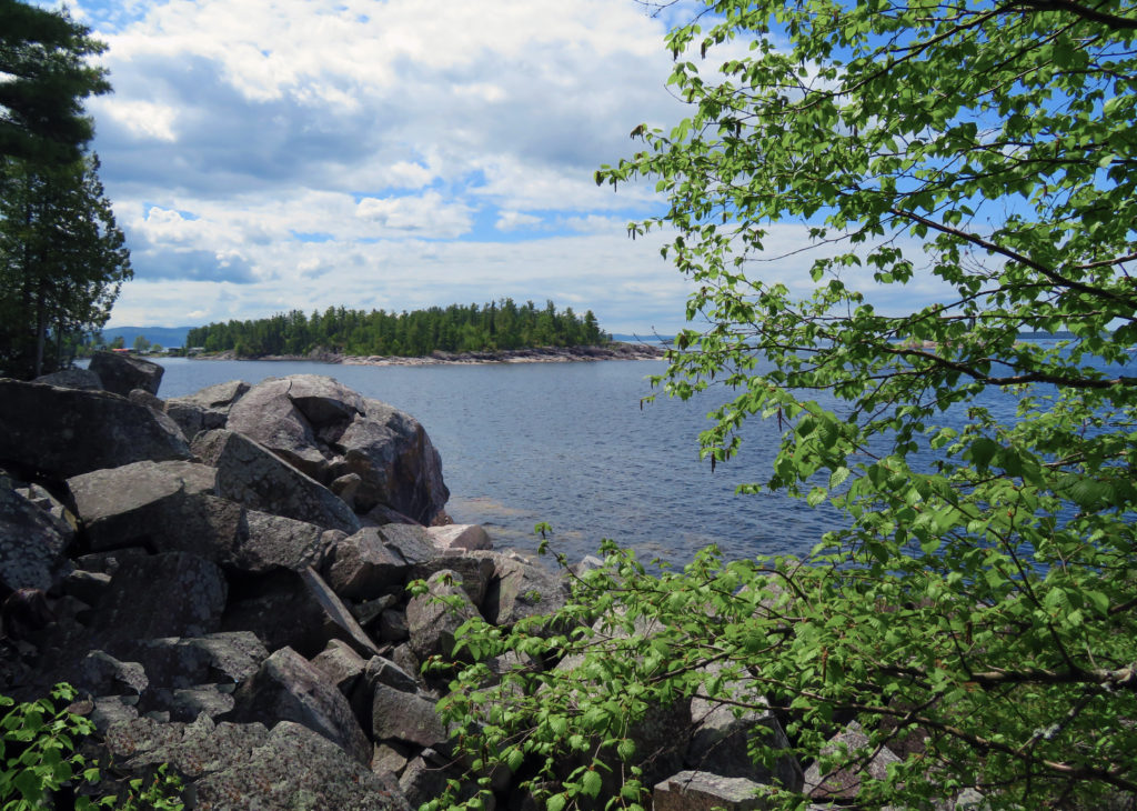 Rocks and shrubbery on the edge of the lake in the foreground and a small island in the distance on the lake.